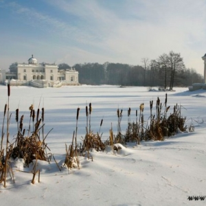 Fotografia architektury i wnętrz, pałac wśród szuwarów