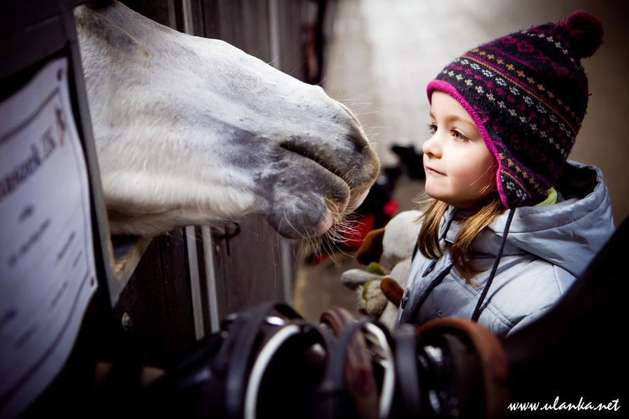 Dziewczynka z koniem