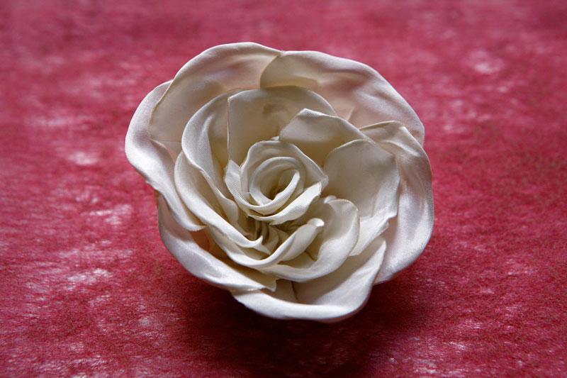 Packshot spinka - biała róża
