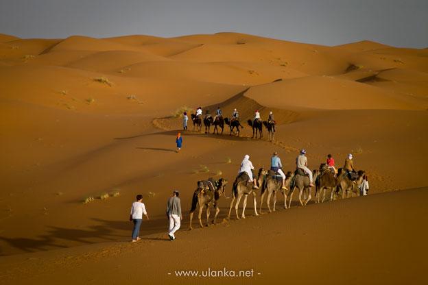 wyprawa do Maroka